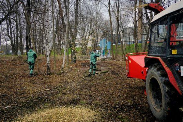 7. PDS - uklid pozemku na Palmovce
